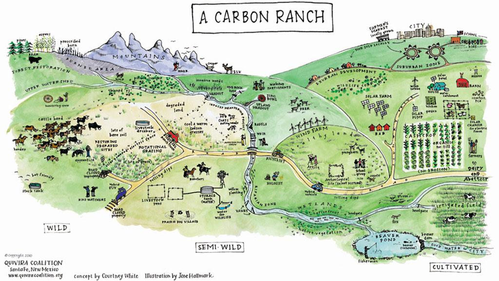 CarbonMap