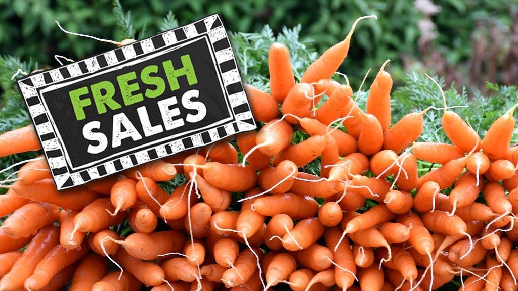 freshsales_carrots