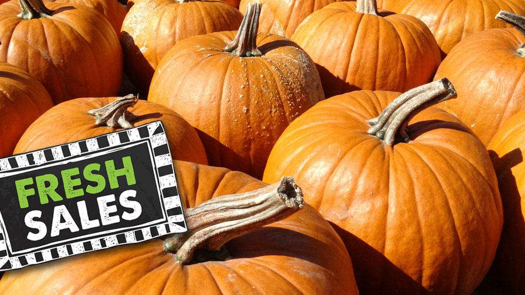 pumpkinslider